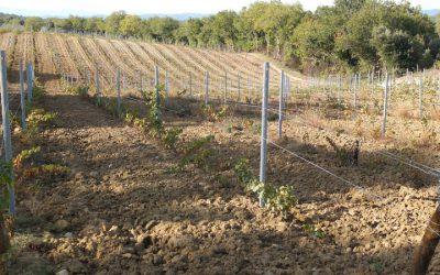 La préparation des sols